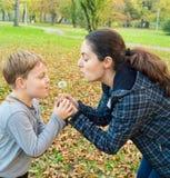 母亲和儿子吹的蒲公英 库存照片