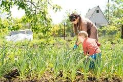 母亲和儿子在菜园里 免版税库存照片