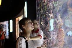 母亲和儿子观看的鱼 免版税库存照片