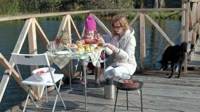 母亲和女儿、一年轻女人和一女孩衣服暖和的,做茶,走在狗旁边,野餐由 股票视频