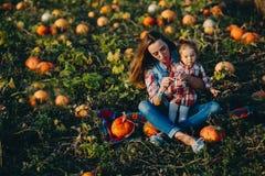 母亲和女儿一个领域的用南瓜 库存图片