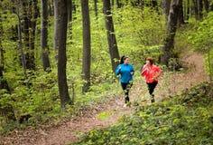母亲和女儿佩带的运动服和赛跑在森林里 库存图片