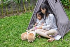 母亲和女儿哺养的兔子 库存图片