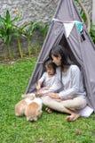 母亲和女儿哺养的兔子 图库摄影