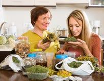 母亲和女儿用清凉茶 免版税库存图片