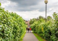 母亲和她的两个孩子通过一个步行区域走在英国 库存照片