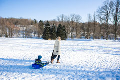 母亲和子项在冬天公园 免版税库存照片
