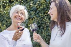 母亲和成人女儿品尝酒 库存照片