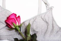 母亲和硅乳头的护理胸罩 与新的一次性乳房垫的妈妈胸罩 防止牛奶流程在的 免版税库存照片
