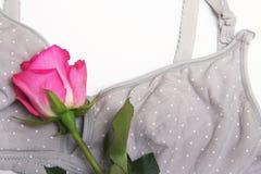 母亲和硅乳头的护理胸罩 与新的一次性乳房垫的妈妈胸罩 防止牛奶流程在的 库存图片