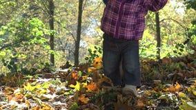 母亲在美丽的秋天森林4K里教小儿童步行 股票视频