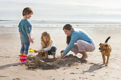 母亲孩子和爱犬在海滩 免版税库存照片