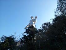 母亲的纪念碑在第比利斯 免版税库存图片