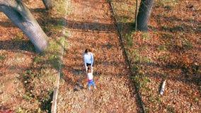 母亲转动婴孩室外 从dron直升机的顶视图 秋天 股票视频
