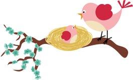 母亲鸟和她的小鸟 免版税库存照片