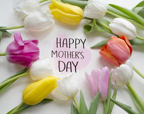 母亲` s天问候概念 美丽的开花的郁金香花 背景背景卡片设计花卉例证 背景蓝色云彩调遣草绿色本质天空空白小束 与beautif的春天背景 图库摄影