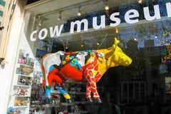 母牛博物馆陈列窗在阿姆斯特丹,荷兰 免版税库存照片