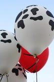 母牛印刷品气球 库存图片