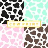 母牛印刷品的汇集 免版税库存照片
