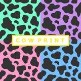 母牛印刷品的汇集 库存图片