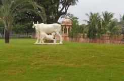 母牛和小牛的艺术性的描述在白色石头 库存图片
