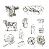 母牛和牛奶 免版税库存照片