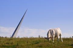 母牛和雕塑 库存照片