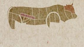 母牛烹调目的身体局部解剖学地图  皇族释放例证