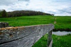 母牛牧场地篱芭 库存照片