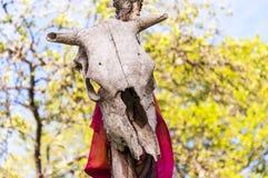 母牛的头骨与垂悬在木棍子的红色围巾的 免版税库存图片