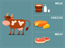 母牛的逗人喜爱的动画片例证 库存照片