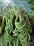 母牛豌豆 库存图片