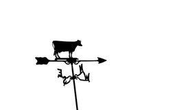 母牛风标 免版税库存照片