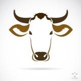 母牛头的传染媒介图象 免版税图库摄影