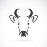 母牛头的传染媒介图象 库存照片