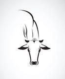 母牛头的传染媒介图象 免版税库存图片