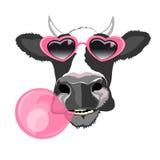 母牛画象 库存图片