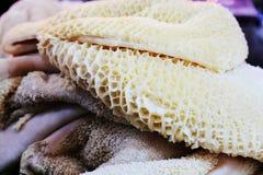 母牛` s胃或蜂巢胃 免版税图库摄影