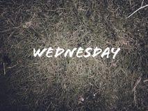每日名字'星期三'在绿草背景 库存照片