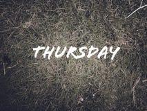 每日名字'星期二'在绿草背景 库存照片