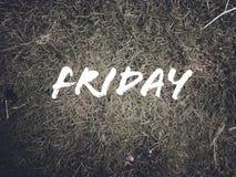 每日名字'星期五'在绿草背景 免版税库存图片