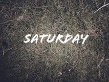 每日名字'星期六'在绿草背景 免版税库存图片