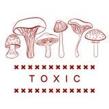 毒含毒物采蘑菇在白色的向量表 免版税库存照片