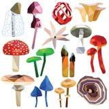 毒蘑菇集合 库存图片