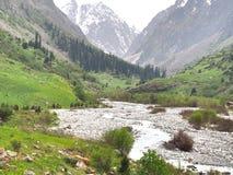 比什凯克吉尔吉斯斯坦天狮单山的丙氨酸Archa国家公园  免版税库存图片