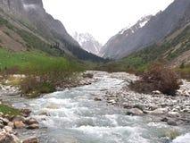 比什凯克吉尔吉斯斯坦天狮单山的丙氨酸Archa国家公园  免版税库存照片