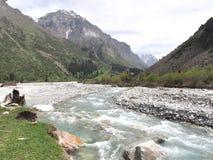 比什凯克吉尔吉斯斯坦天狮单山的丙氨酸Archa国家公园  库存照片