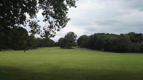 比利时公园自然秀丽和平 免版税库存照片