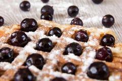 比利时华夫饼干用莓果洒与搽粉的糖 库存图片
