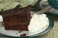 比利时巧克力蛋糕 图库摄影